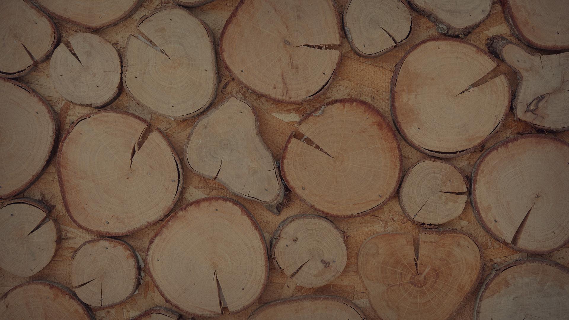 Siamo gli artigiani delle costruzioni in legno